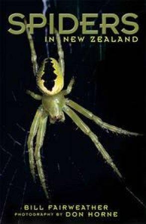 Spiders by Bill Fairweather