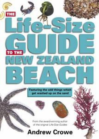 The Life-Size Guide To The New Zealand Beach by Andrew Crowe