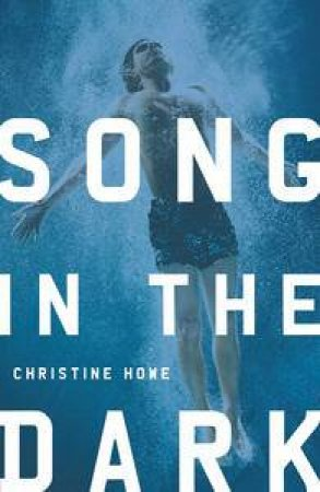 Song in the Dark by Christine Howe