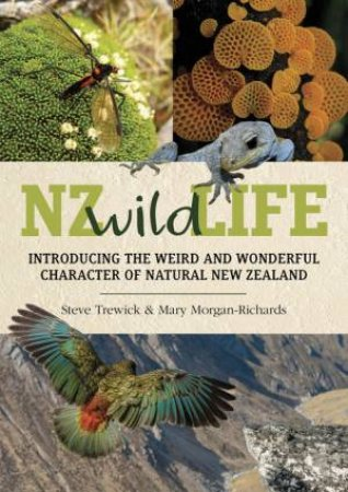NZ Wild Life: Introducing the Weird and Wonderful Character of New Zealand by Steve Trewick & Mary Morgan-Richards