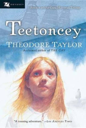 Teetoncey by TAYLOR THEODORE