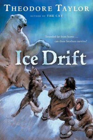 Ice Drift by TAYLOR THEODORE