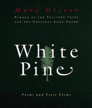 White Pine by OLIVER MARY
