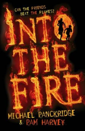 Into the Fire by Pam Harvey & Michael Panckridge