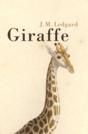 Giraffe by J M Ledgard