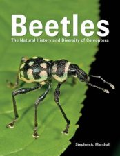 Beetles The Natural History And Diversity Of Coleoptera