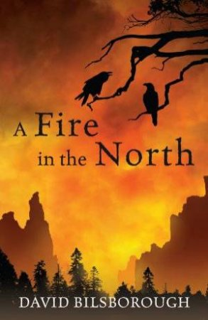 A Fire in the North by David Bilsborough