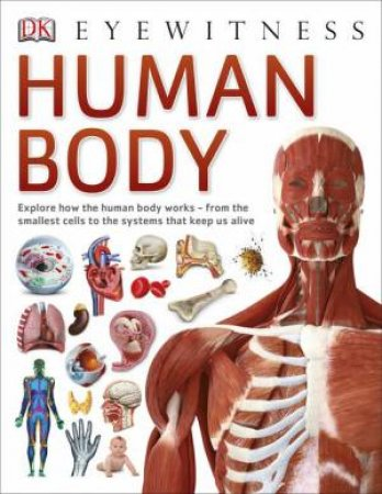 DK Eyewitness: Human Body by Various