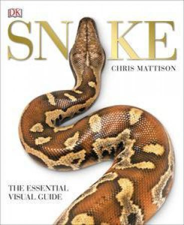 Snake by Various