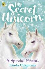 My Secret Unicorn A Special Friend