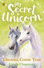 My Secret Unicorn Dreams Come True