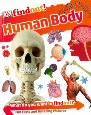 DKfindout! Human Body by Various