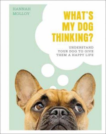 What's My Dog Thinking?