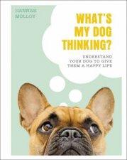 Whats My Dog Thinking