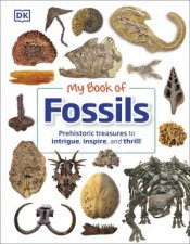 My Book Of Fossils