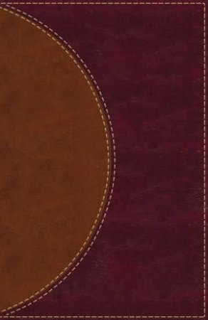 Amplified Reading Bible [Brown]