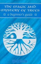A Beginners Guide The Magic And Mystery Of Trees
