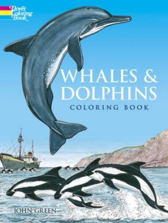 Whales and Dolphins Coloring Book