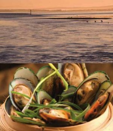 Oceans: Recipes and Stories from Australia's Coastline