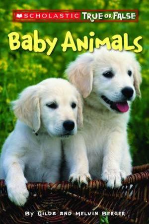 Scholastic True Or False: Baby Animals by Gilda Berger
