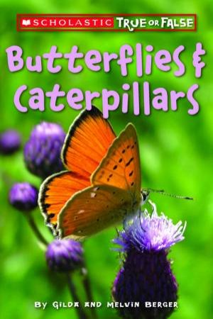 Scholastic True Or False: Butterflies And Caterpillars by Gilda Berger