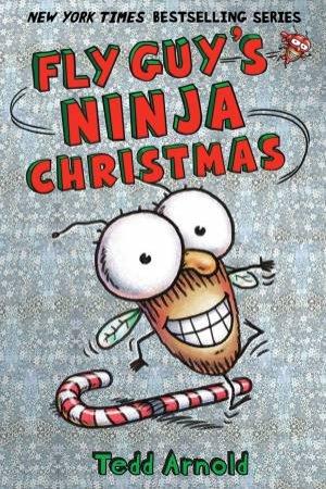 Fly Guy's Ninja Christmas by Tedd Arnold