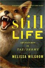 Still Life Adventures in Taxidermy