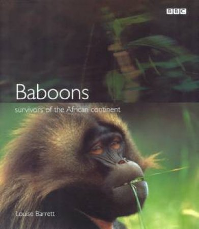 Baboons: Survivors of the African Continent by Louise Barrett