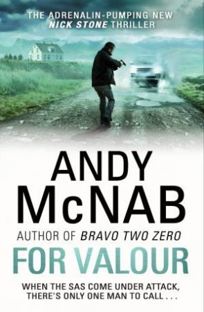 For Valour by Andy McNab