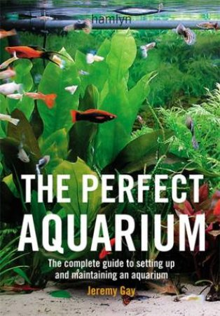 The Perfect Aquarium by Jeremy Gay