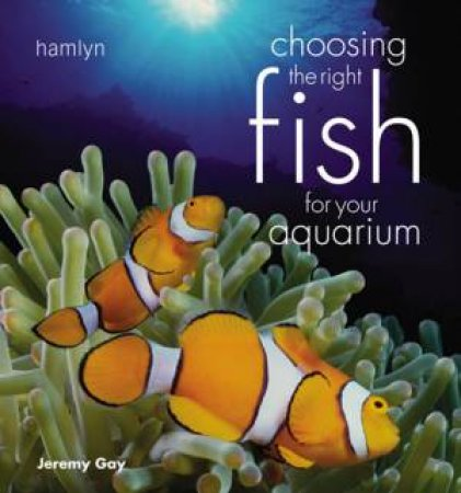 Choosing The Right Fish For Your Aquarium by Jeremy Gay