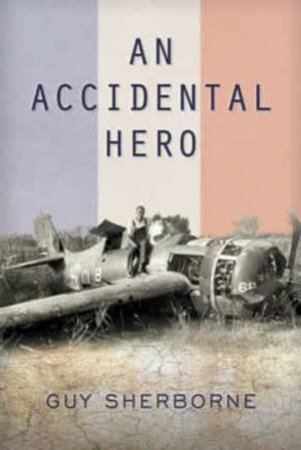 An Accidental Hero by Guy Sherborne