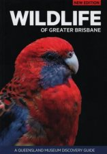 A Queensland Museum Guide Wildlife Of Greater Brisbane  3rd Ed