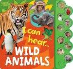 10 Button Sound Book Wild Animals
