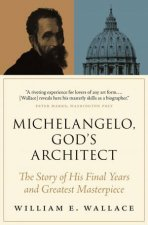 Michelangelo Gods Architect