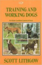 Training  Working Dogs For Quiet Confident Control of Stock