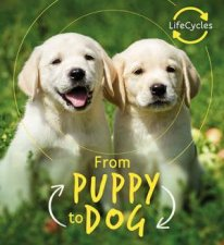 From Puppy To Dog Lifecycles