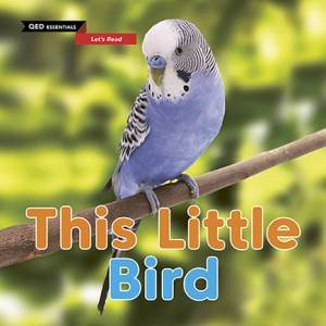 QED Essentials Let's Read: This Little Bird