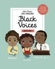 A Little People Big Dreams Box Set Black Voices