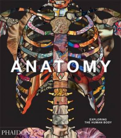 Anatomy by Various