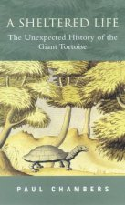 A Sheltered Life The Unexpected History Of The Giant Tortoise