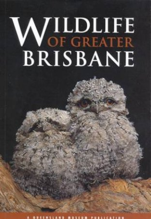 A Queensland Museum Guide: Wildlife Of Greater Brisbane by Various