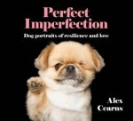 Perfect Imperfection Dog Portraits Of Resilience And Love