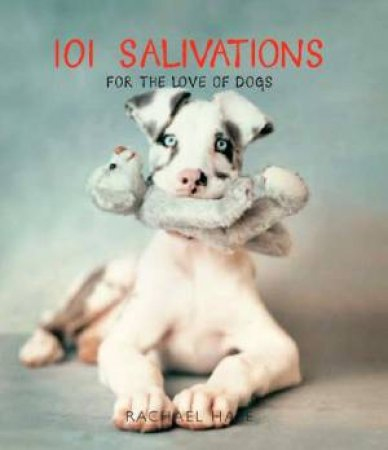 101 Salivations: For The Love Dogs