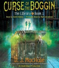 The Library Mysterious Messenger Book 1