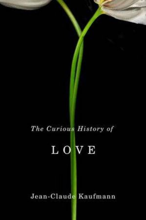 The Curious History of Love by Jean-Claude Kaufmann