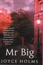 A Fizz  Buchanan Mystery Mr Big
