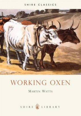 Working Oxen by Martin Watts