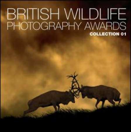 British Wildlife Photography Awards  by Various