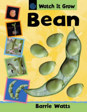 Watch it Grow: Bean by Barrie Watts